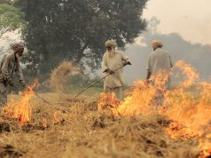 Stubble Burning degrading Air Quality