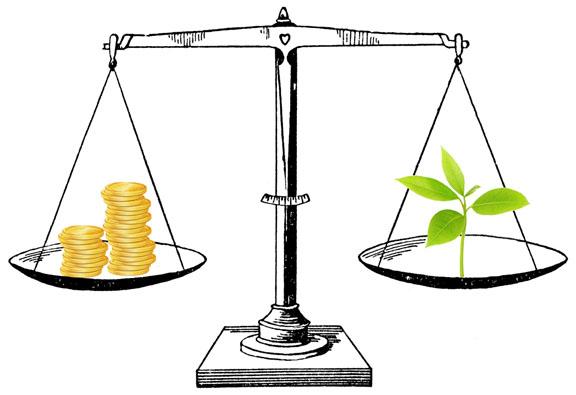 Misuse of CSR Fund