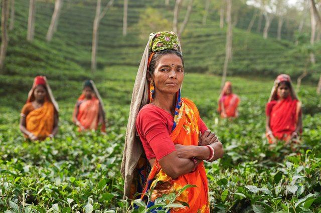 rural women in India
