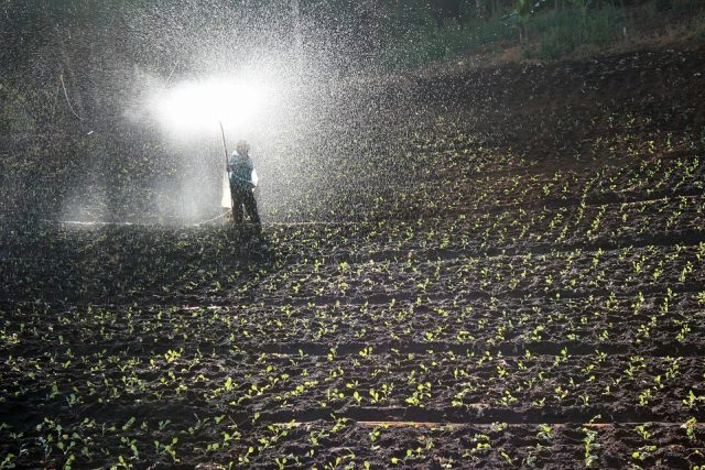 Agriculture and Water Pollution