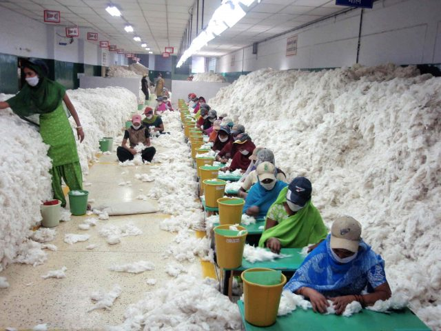 Supply Chains - Cotton Industry