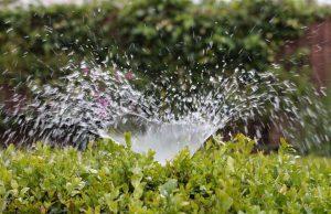 Farmers income Irrigation
