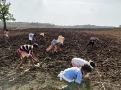 Child Labour on Cotton Farms