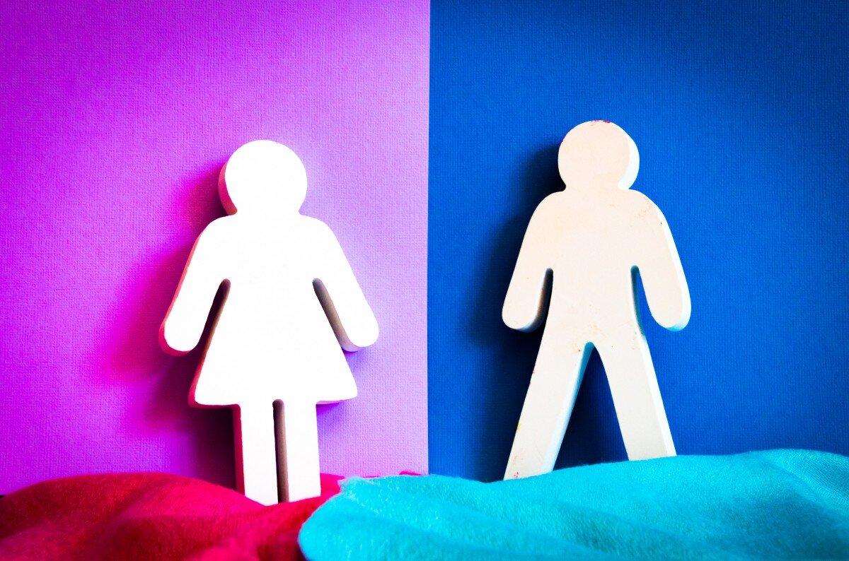 SDG Gender Index