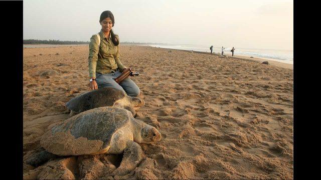 Marine biologist Divya Karnad