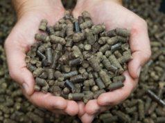 fuel pellets - convert waste into fuel