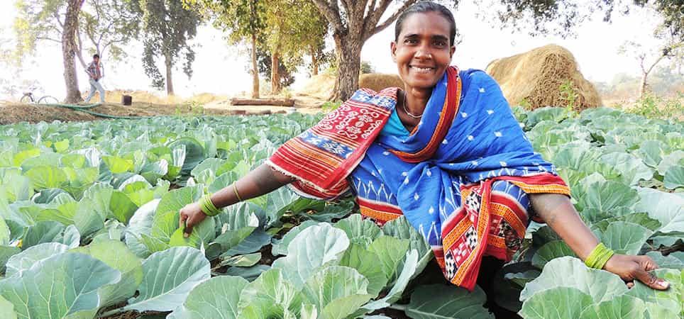 Reliance CSR helps in Rural Transformation