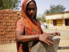Rural Households Bihar
