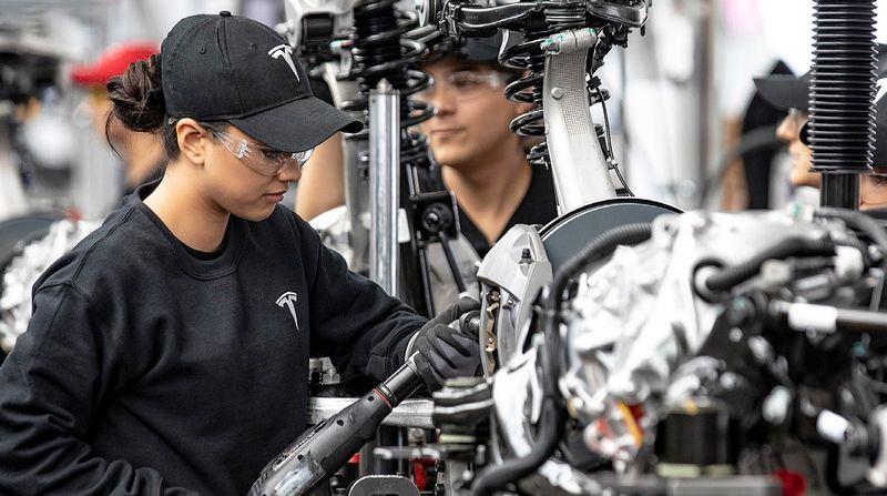 Tesla employees program