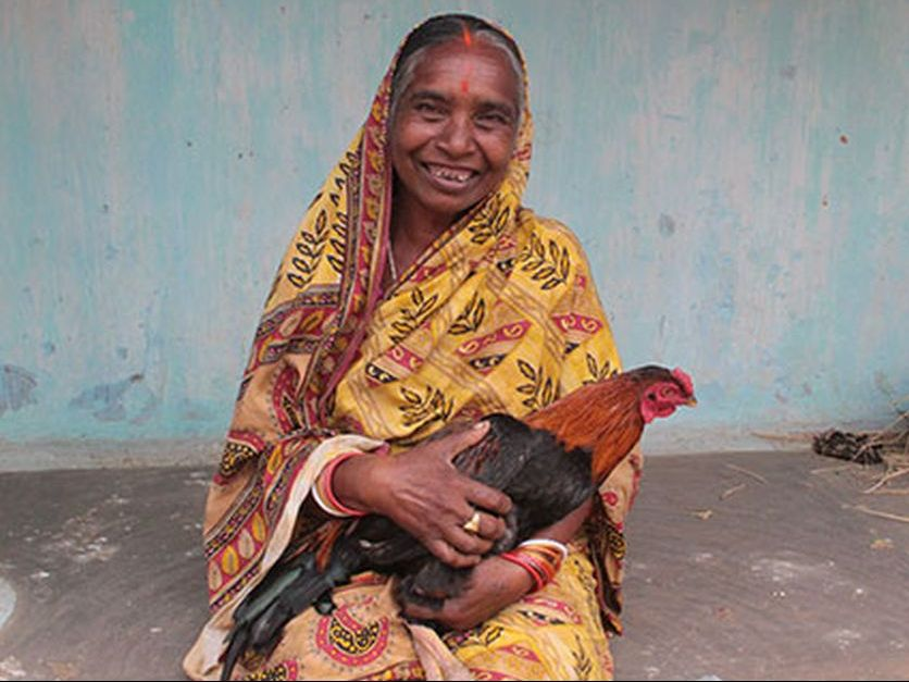 Backyard poultry farming for women