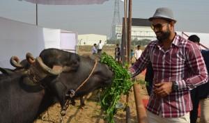 Pashu Vikas Day Irfan Pathan